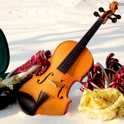How to Care for Your Violin in Winter